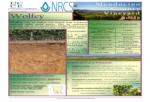 Wolfey soil info sheet